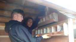 Pigeon holes or sparrow loft?