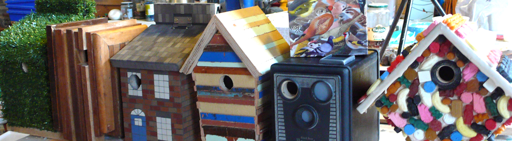 Bird Boxes in a library?